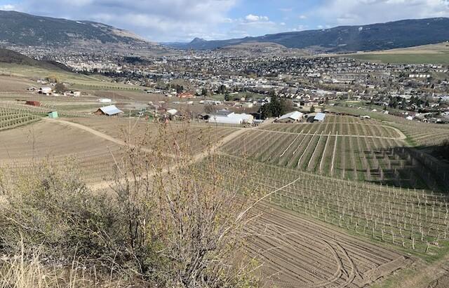 Versoepelde regelgeving maakt secundaire woningen op landbouwgrond mogelijk zonder ALC-goedkeuring – Vernon News