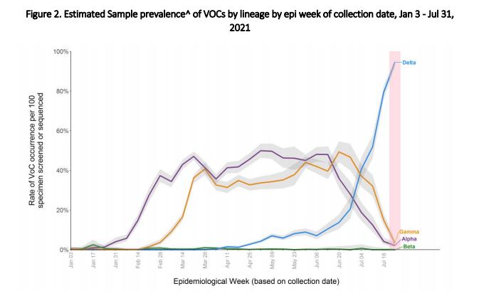 Delta-variant maakt nu 95% van de COVID-19-gevallen in British Columbia uit: ambtenaren - foto